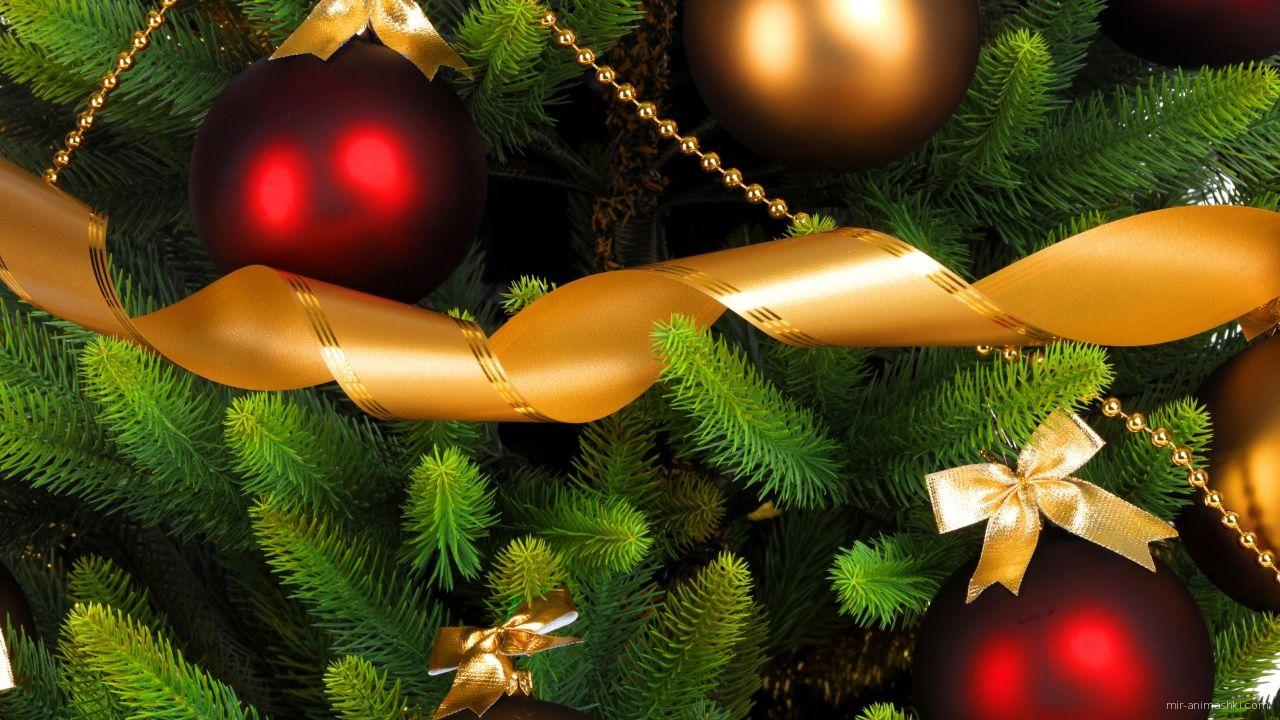 Красные шары на елке - C Рождеством Христовым поздравительные картинки