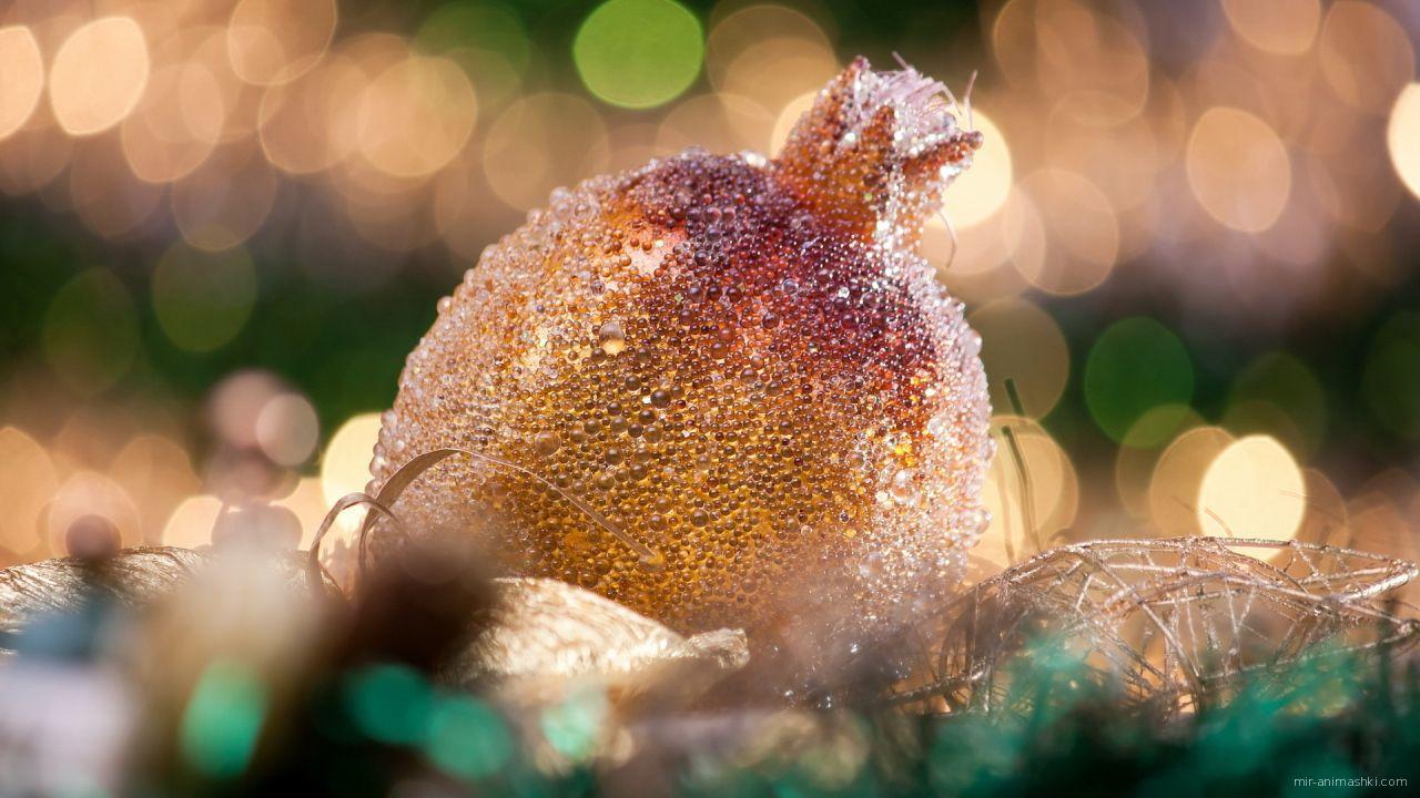 Гранат на Рождество - C Рождеством Христовым поздравительные картинки