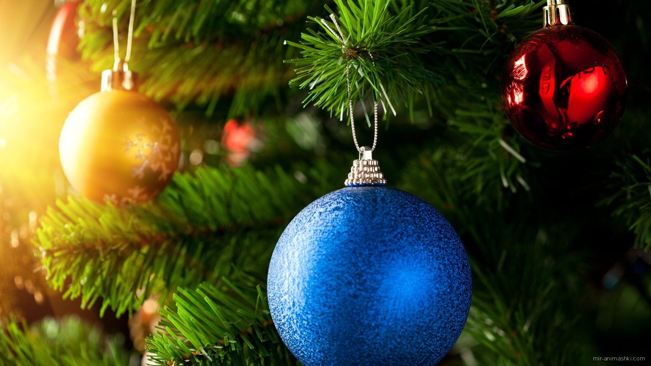 Разноцветные шары на елке - C Рождеством Христовым поздравительные картинки
