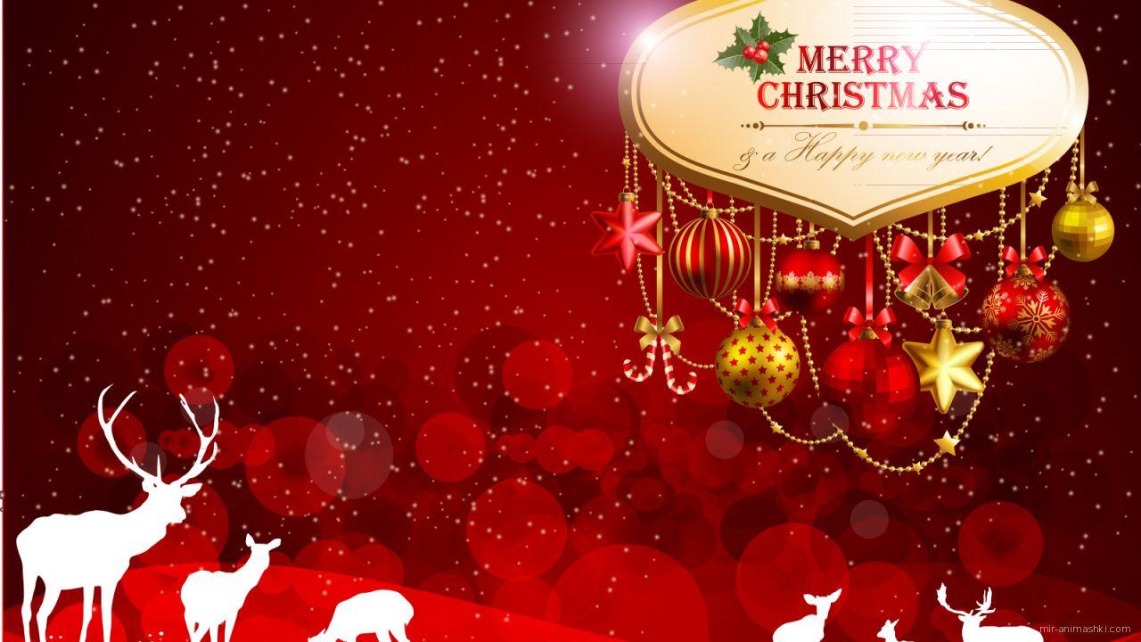 Красная картинка с белыми оленями на рождество - C Рождеством Христовым поздравительные картинки