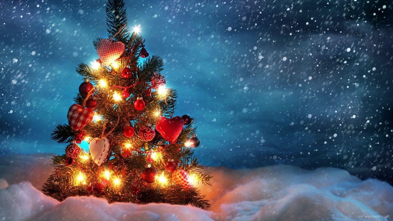 Красивая ель на Рождество - C Рождеством Христовым поздравительные картинки