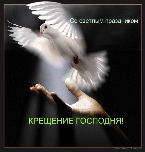 Со светлой праздником Крещение Господня - C Крещение Господне поздравительные картинки