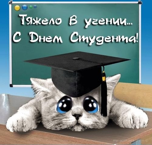 С ДнЁм СтУдЕнТа - С днем студента поздравительные картинки