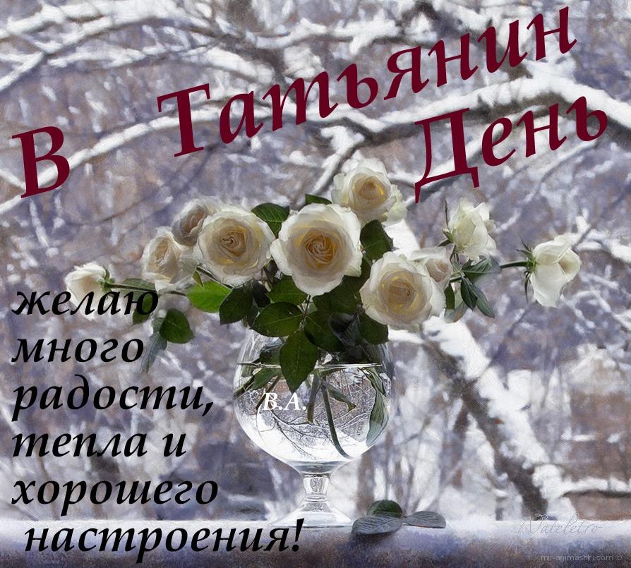 Татьянин День! - Татьянин день - День студента поздравительные картинки
