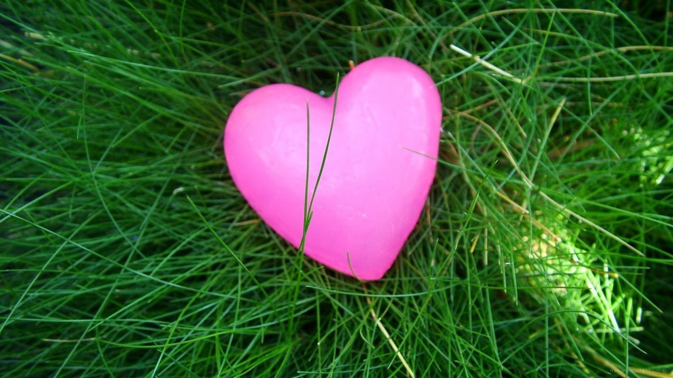 Розовое сердечко на траве - С днем Святого Валентина поздравительные картинки