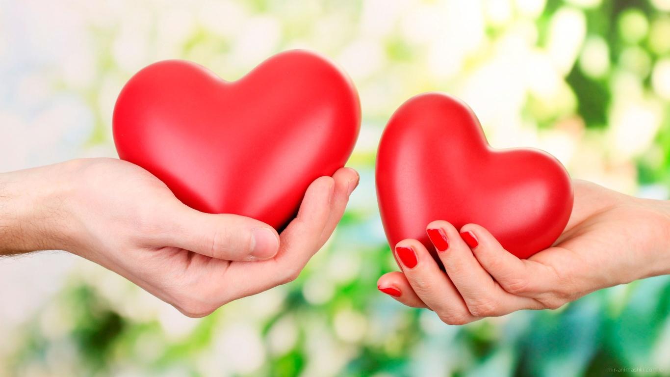 Сердца в руках на День Святого Валентина 14 февраля - С днем Святого Валентина поздравительные картинки
