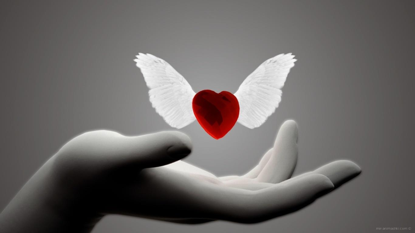 Сердце с крыльями на День Святого Валентина 14 февраля - С днем Святого Валентина поздравительные картинки