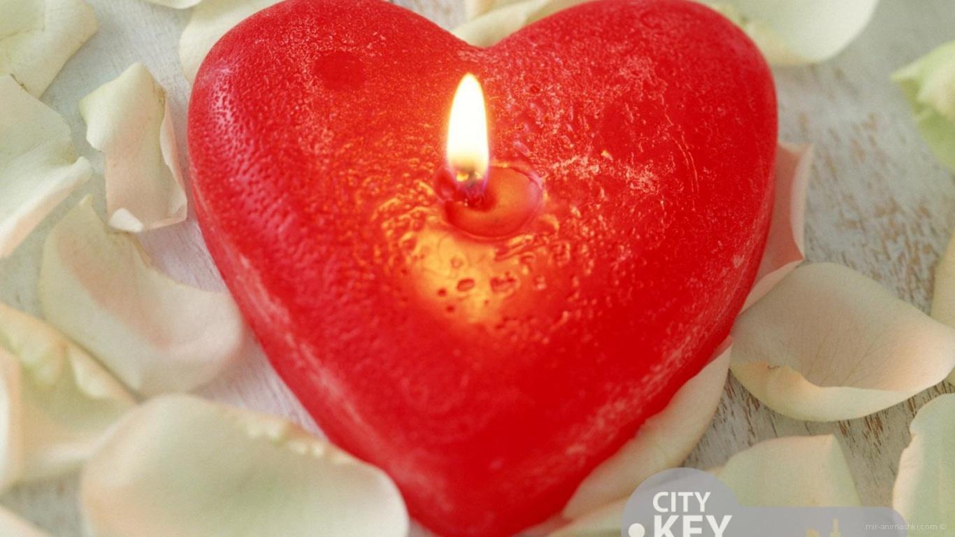 Сердце свеча на День Святого Валентина 14 февраля - С днем Святого Валентина поздравительные картинки