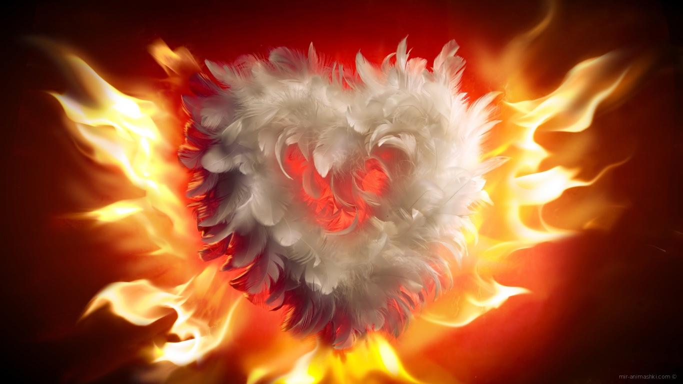 Горящее сердце на День Влюбленных 14 февраля - С днем Святого Валентина поздравительные картинки