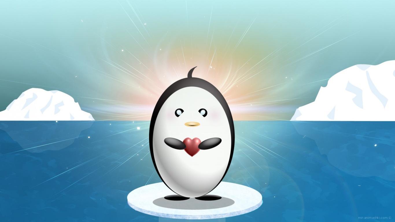 Влюбленный пингвин на День Влюбленных 14 февраля - С днем Святого Валентина поздравительные картинки