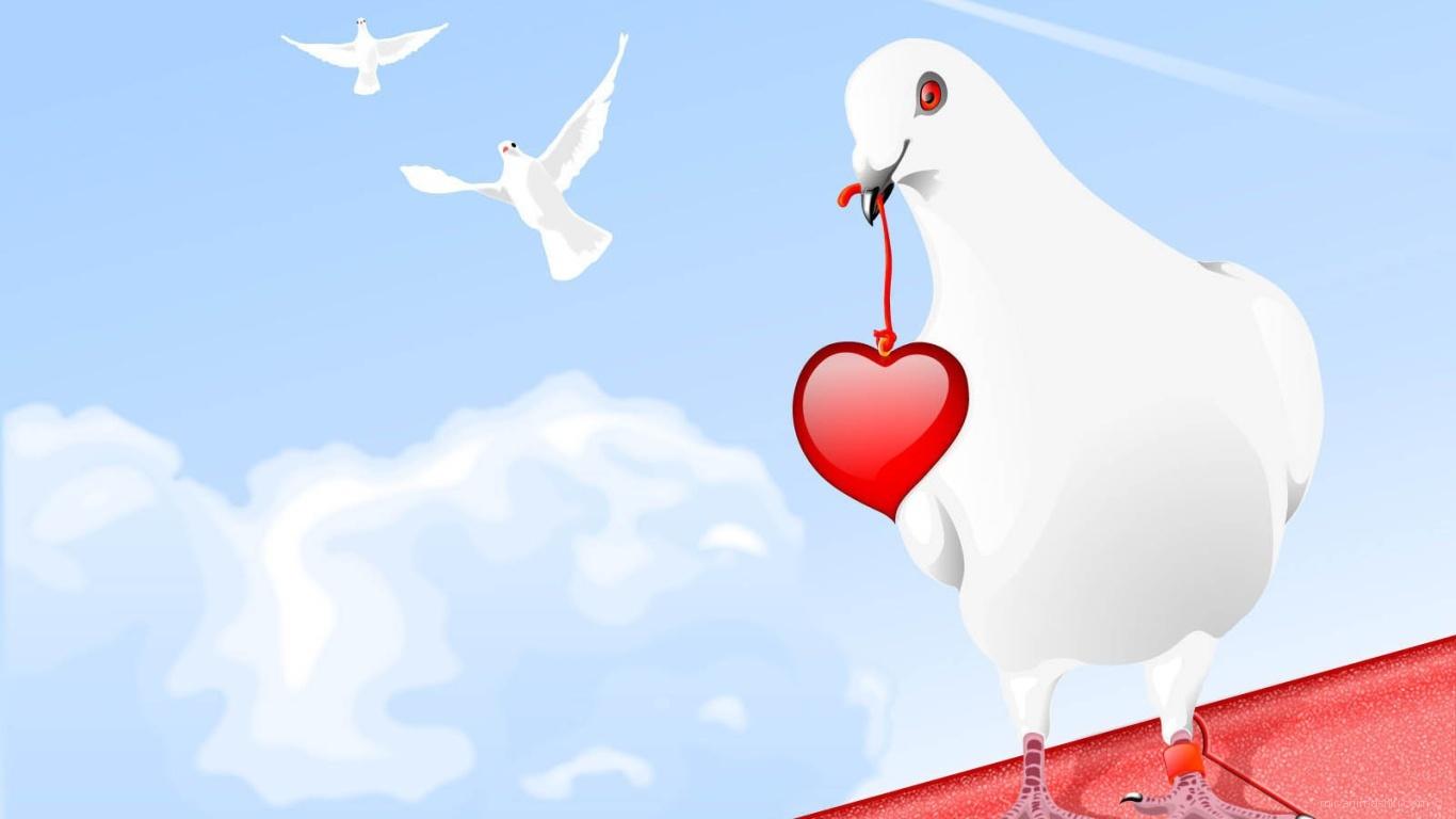 Голубь с сердцем на День Влюбленных 14 февраля - С днем Святого Валентина поздравительные картинки