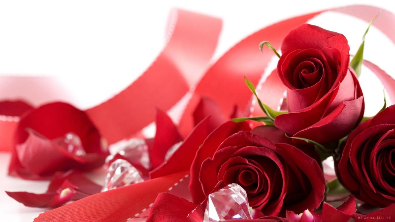 Букет роз на День Святого Валентина 14 февраля - С днем Святого Валентина поздравительные картинки