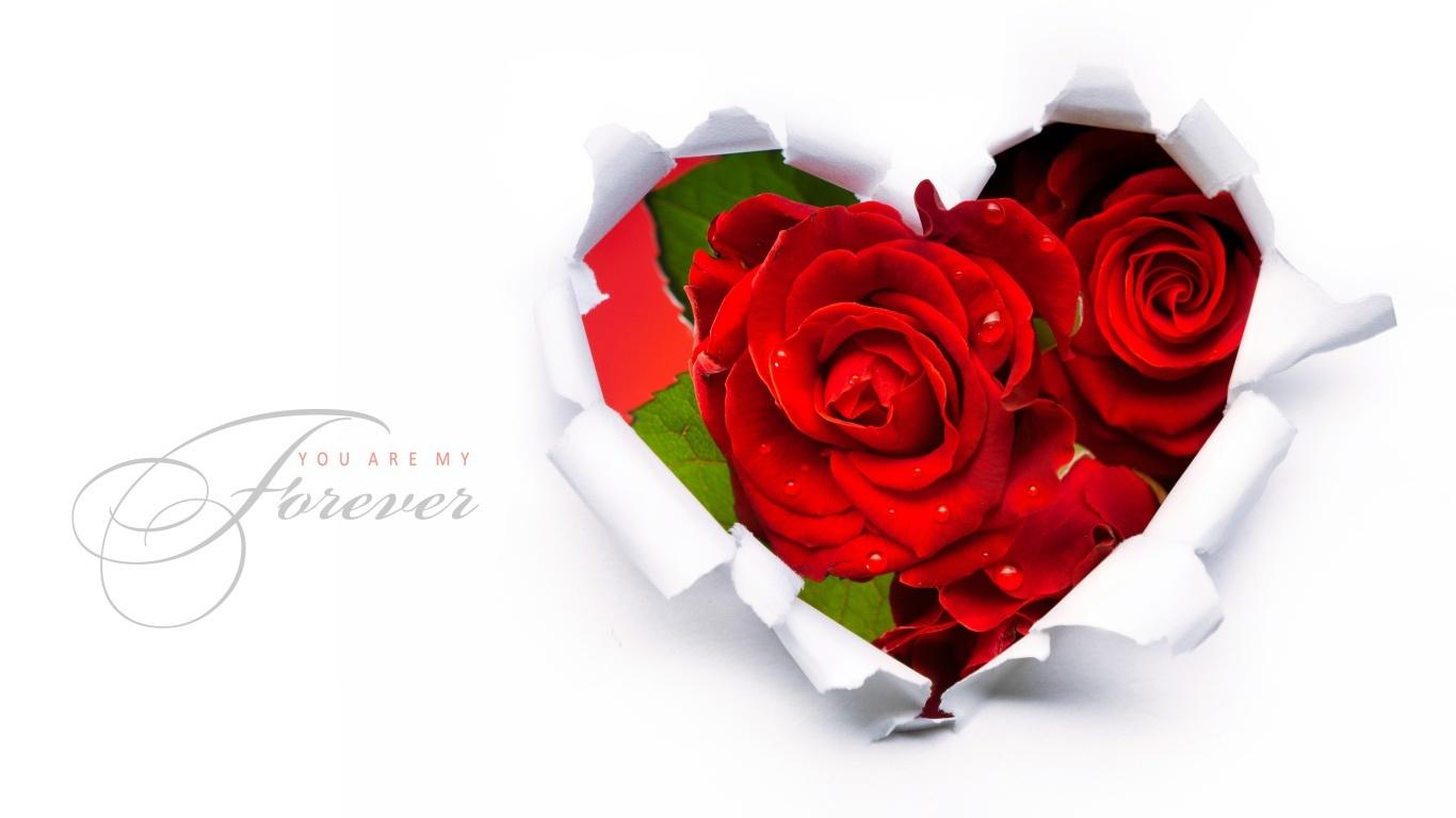 Ты моя навсегда в День Святого Валентина - С днем Святого Валентина поздравительные картинки