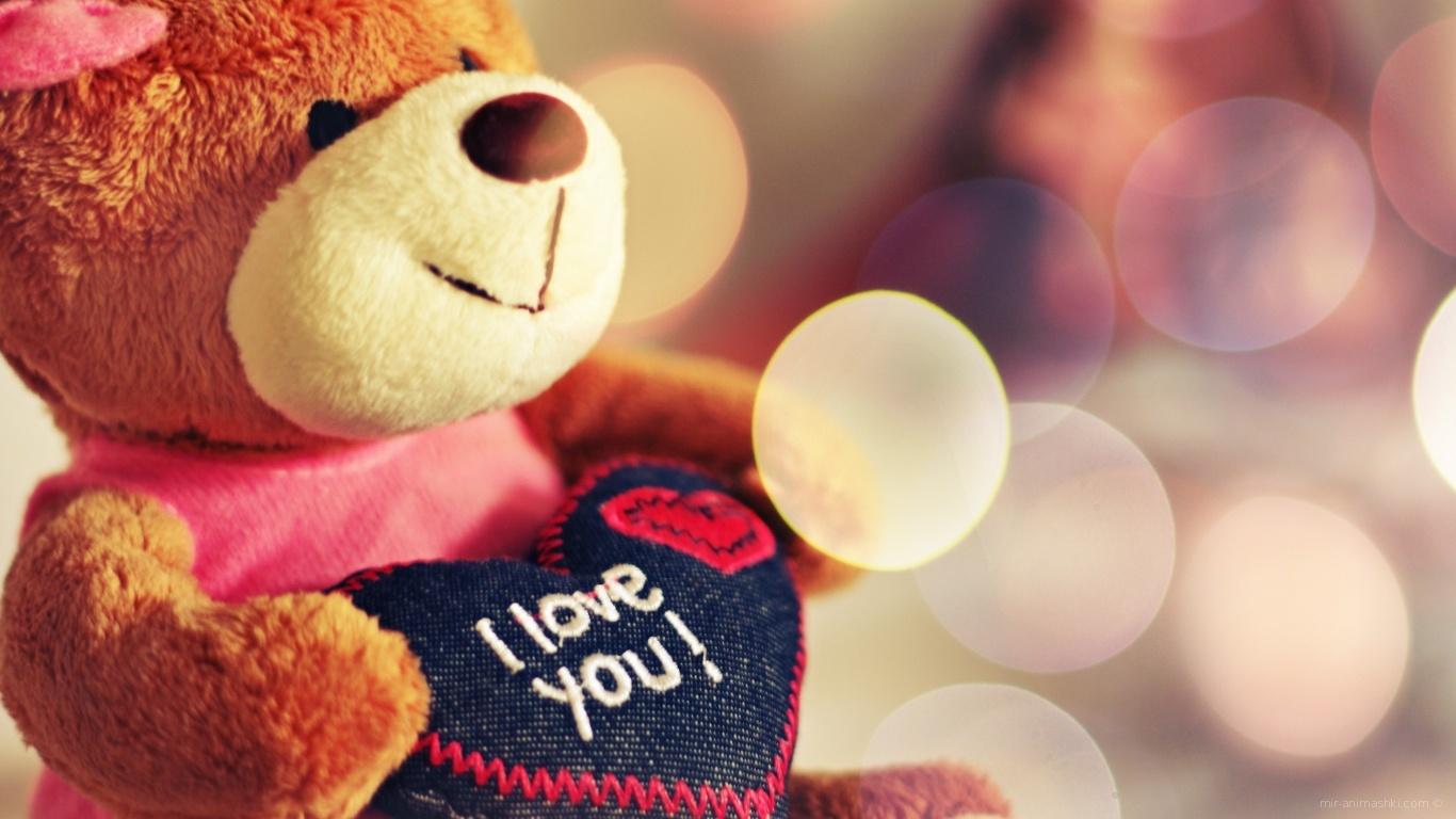 Плюшевый медведь на День Святого Валентина 14 февраля - С днем Святого Валентина поздравительные картинки