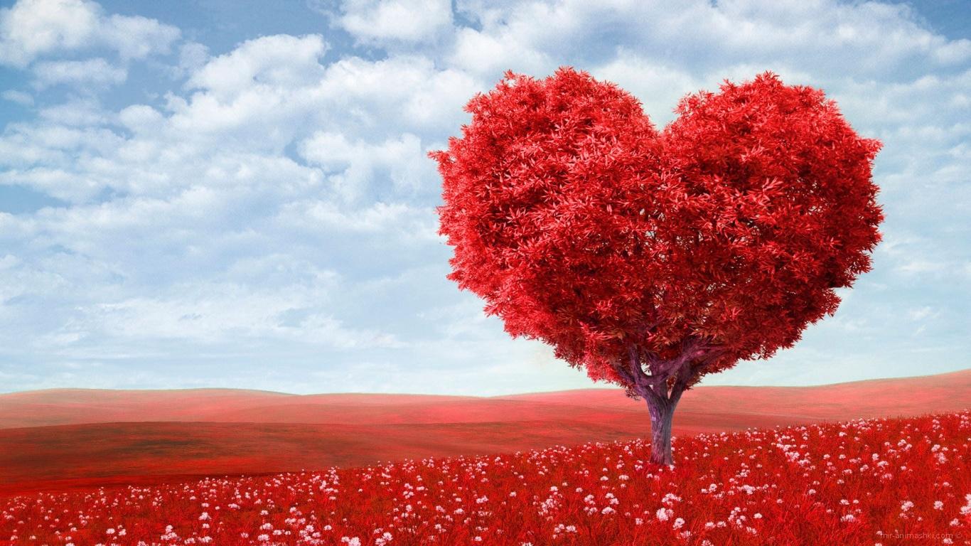 Дерево - сердце на День Святого Валентина - С днем Святого Валентина поздравительные картинки
