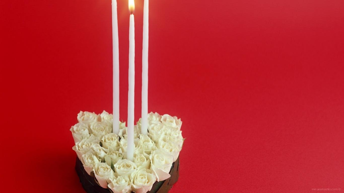 Белые розы в День Святого Валентина - С днем Святого Валентина поздравительные картинки