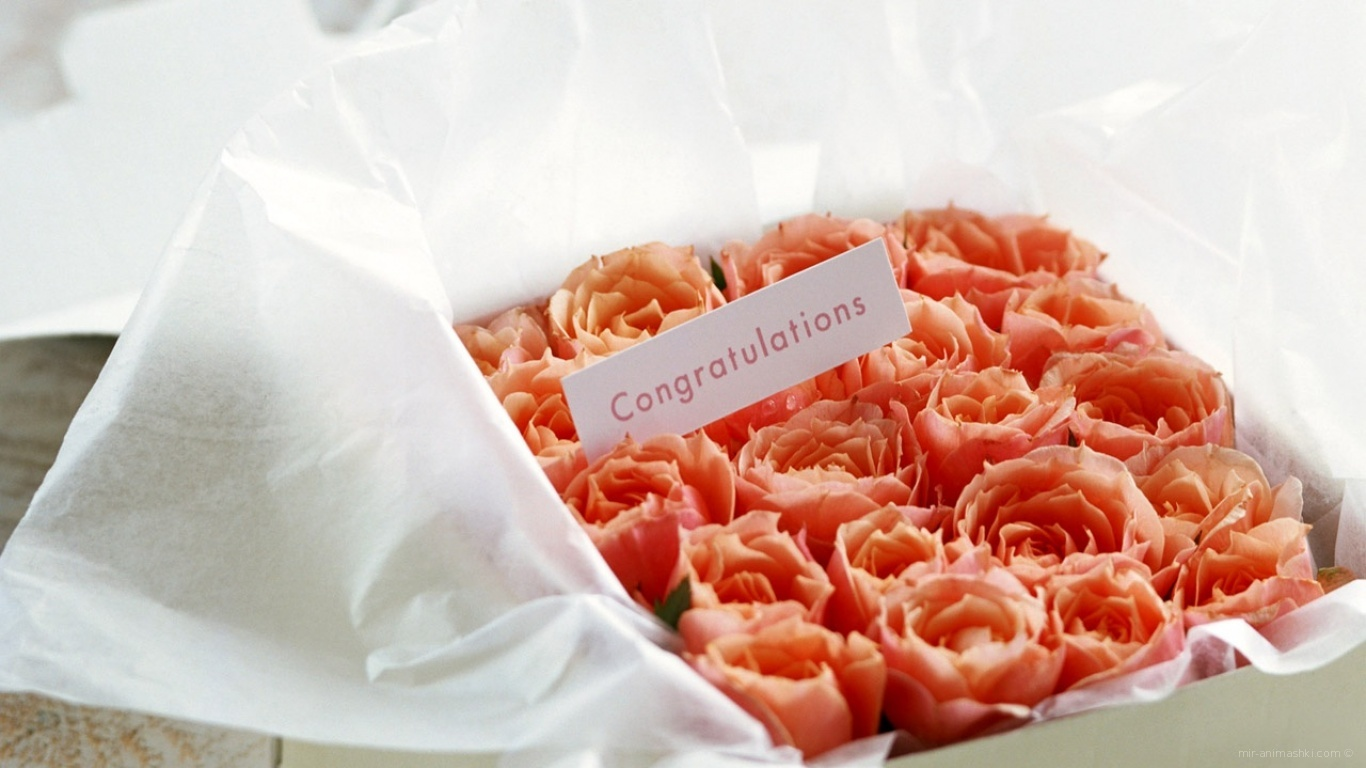 Что написать в открытке к букету цветов девушке