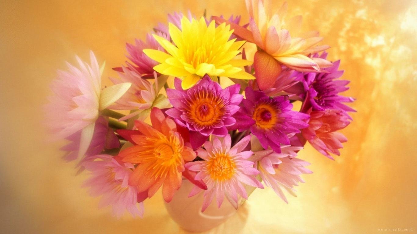Яркие цветы красивым женщинам на 8 марта - C 8 марта поздравительные картинки