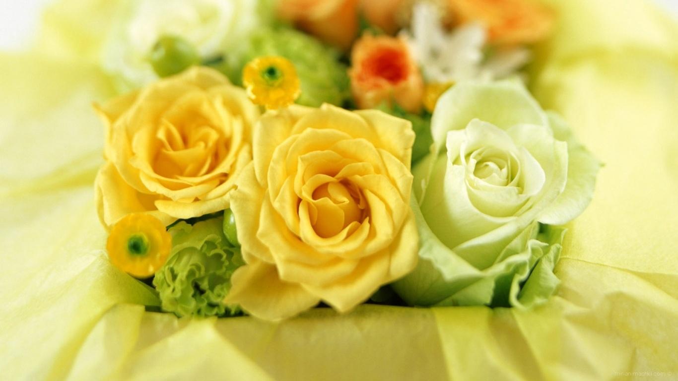 Цветочки на 8 марта - C 8 марта поздравительные картинки