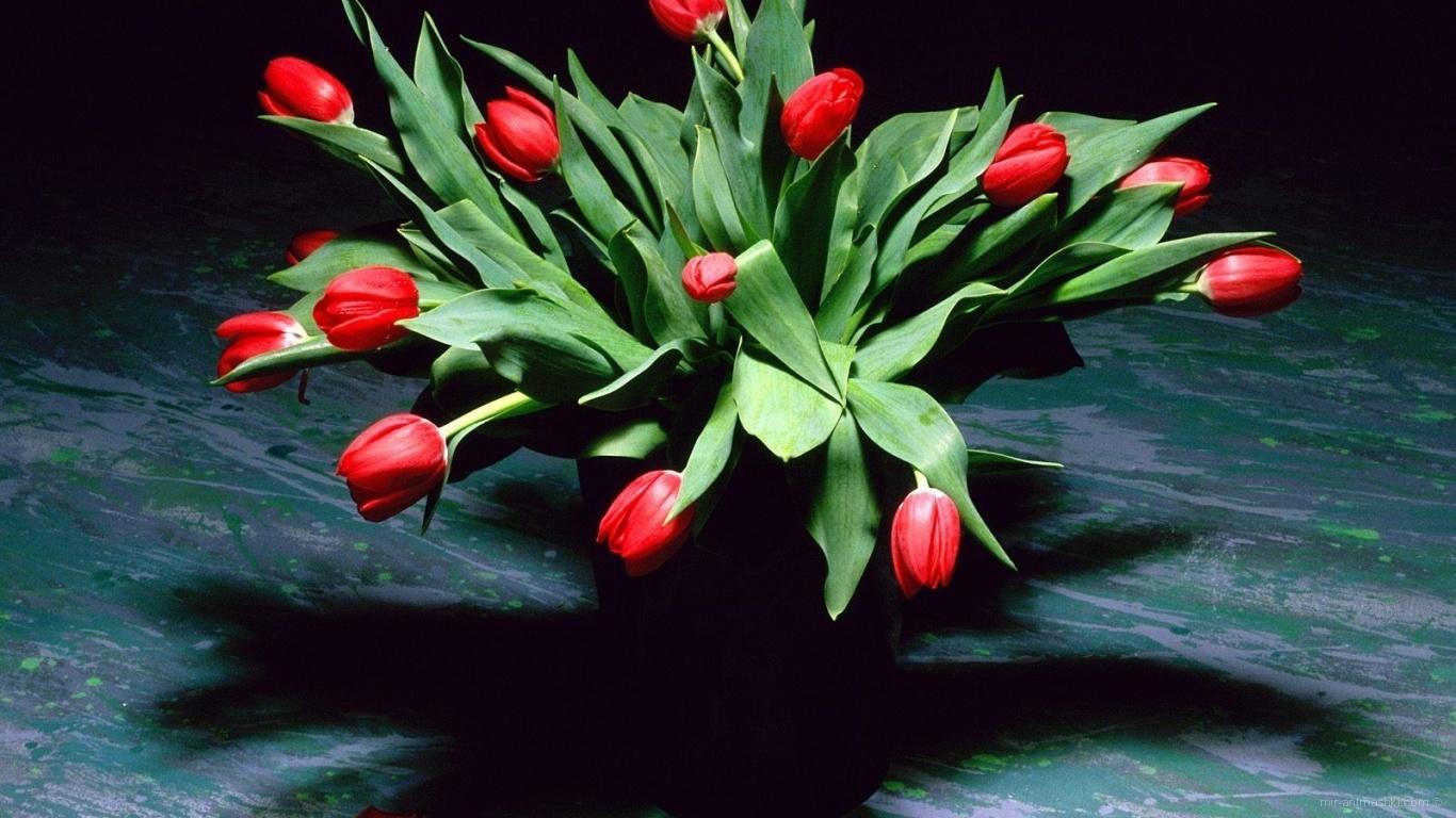Букет женщинам на 8 марта - C 8 марта поздравительные картинки