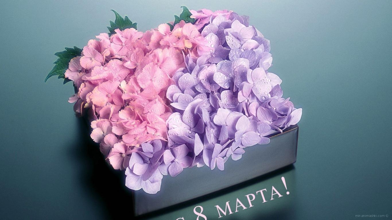 Цветы любимым девчонкам - C 8 марта поздравительные картинки