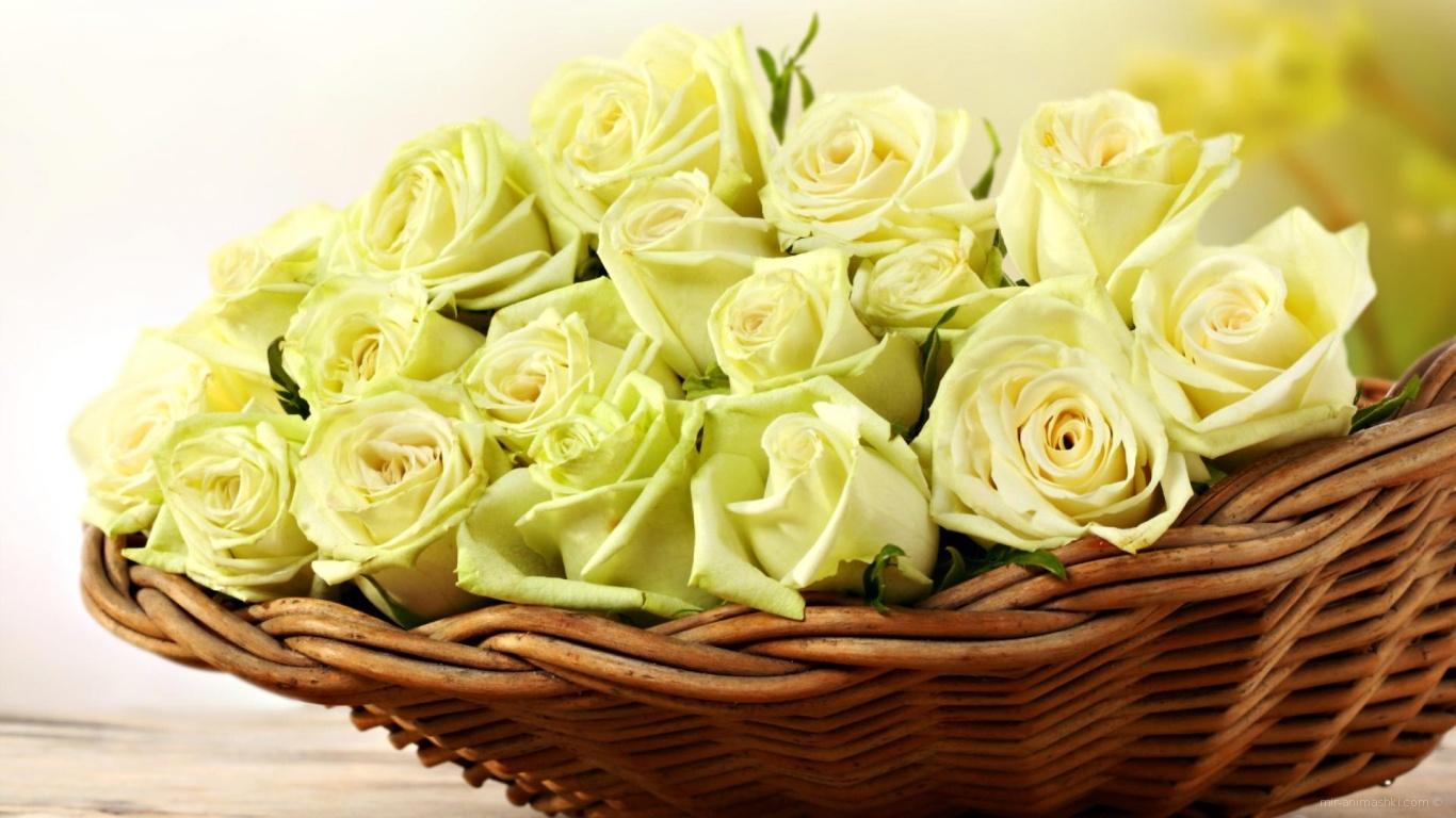 Жёлтые розы в корзине для женщин - C 8 марта поздравительные картинки