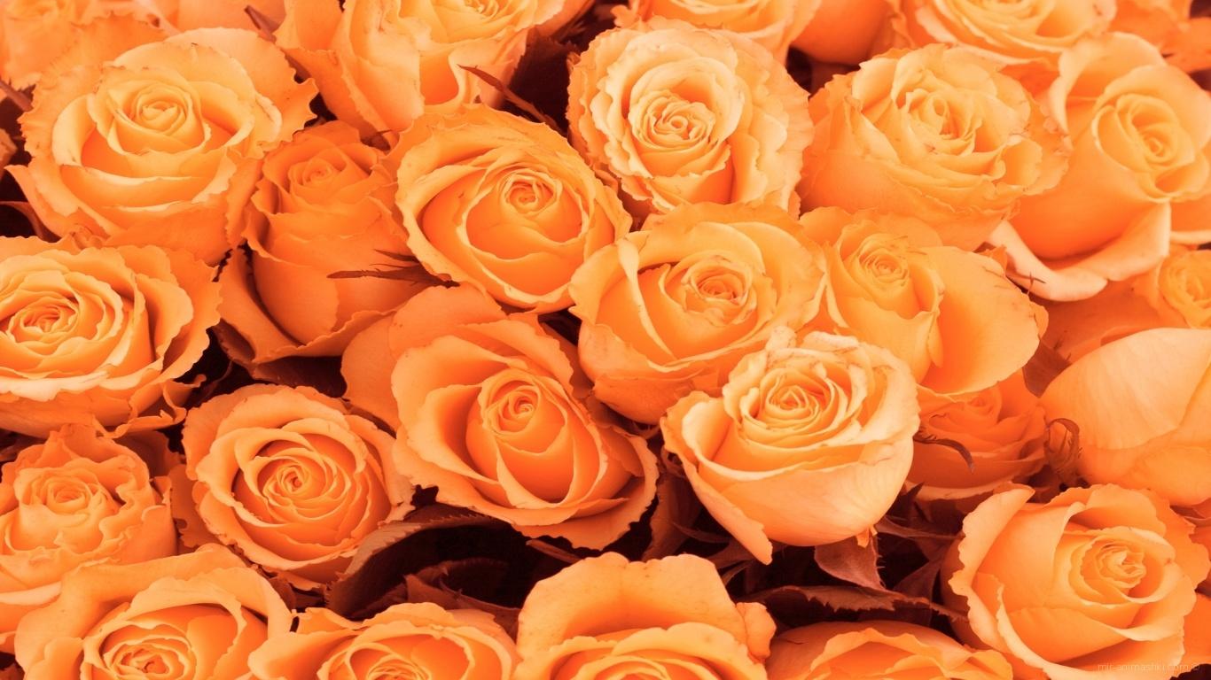 Красивые цветы к 8 Марта - C 8 марта поздравительные картинки