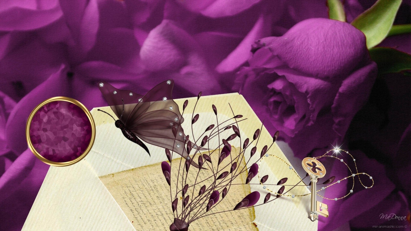 Фиолетовая роза, рисунок на 8 марта - C 8 марта поздравительные картинки