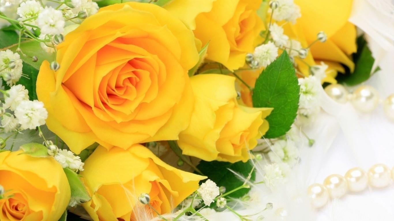 Жёлтые розы в подарок женщинам - C 8 марта поздравительные картинки