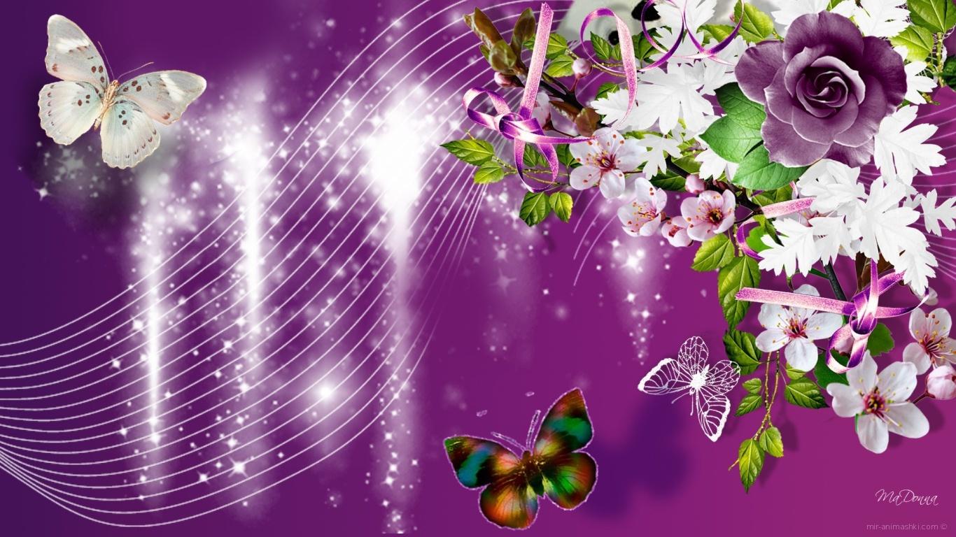 Фиолетовые розы и другие цветы, красивая картинка на 8 марта - C 8 марта поздравительные картинки