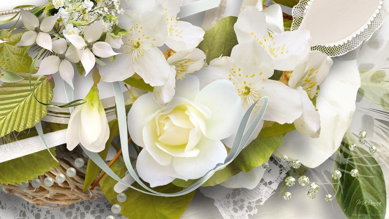 Белая роза и другие цветы, картинка на восьмое марта - C 8 марта поздравительные картинки