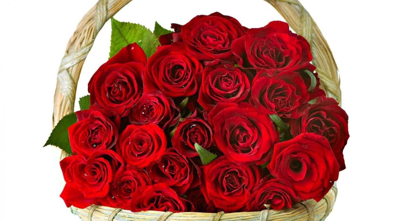 Красные розы в корзине в подарок женщинам на восьмое марта - C 8 марта поздравительные картинки