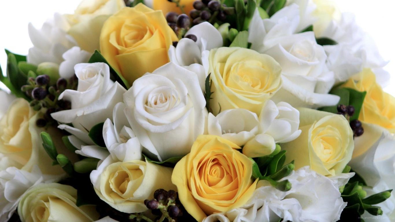Белые и жёлтые розы в букете на восьмое марта - C 8 марта поздравительные картинки