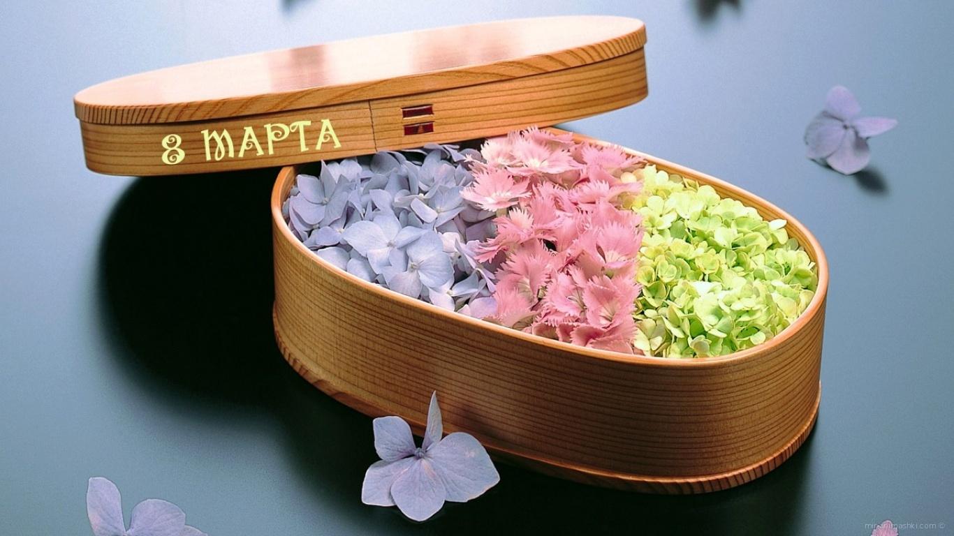 Коробочка с цветами - C 8 марта поздравительные картинки