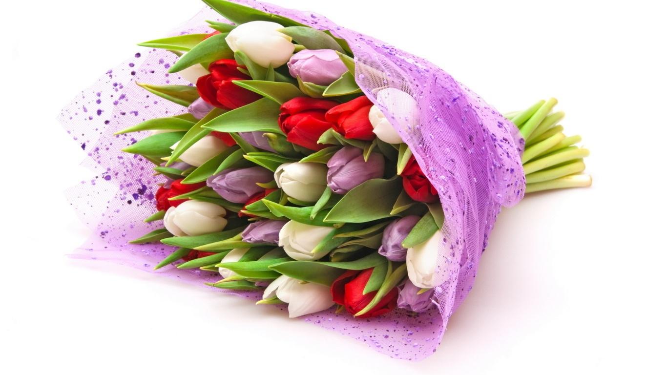 Тюльпаны для девушек на  8 марта - C 8 марта поздравительные картинки