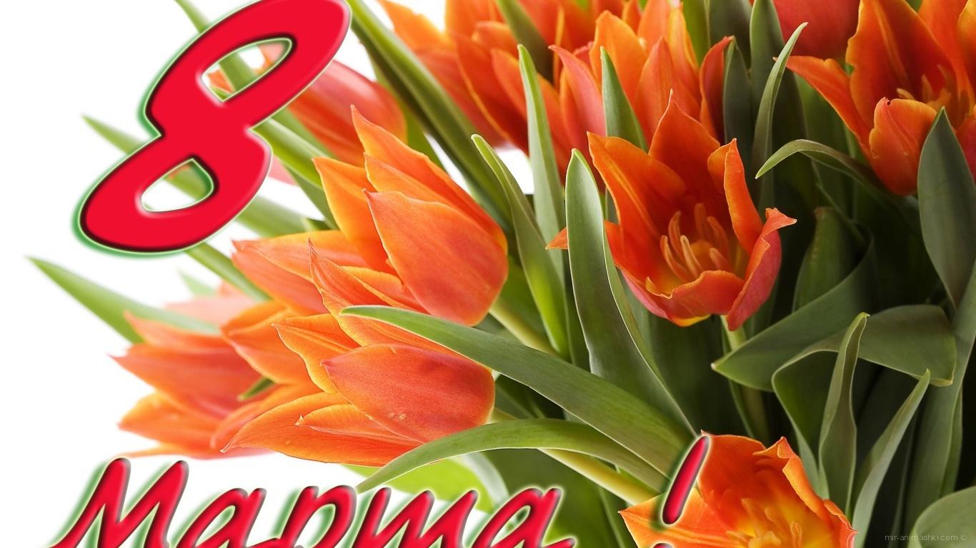 Замечательный букет на 8 марта - C 8 марта поздравительные картинки