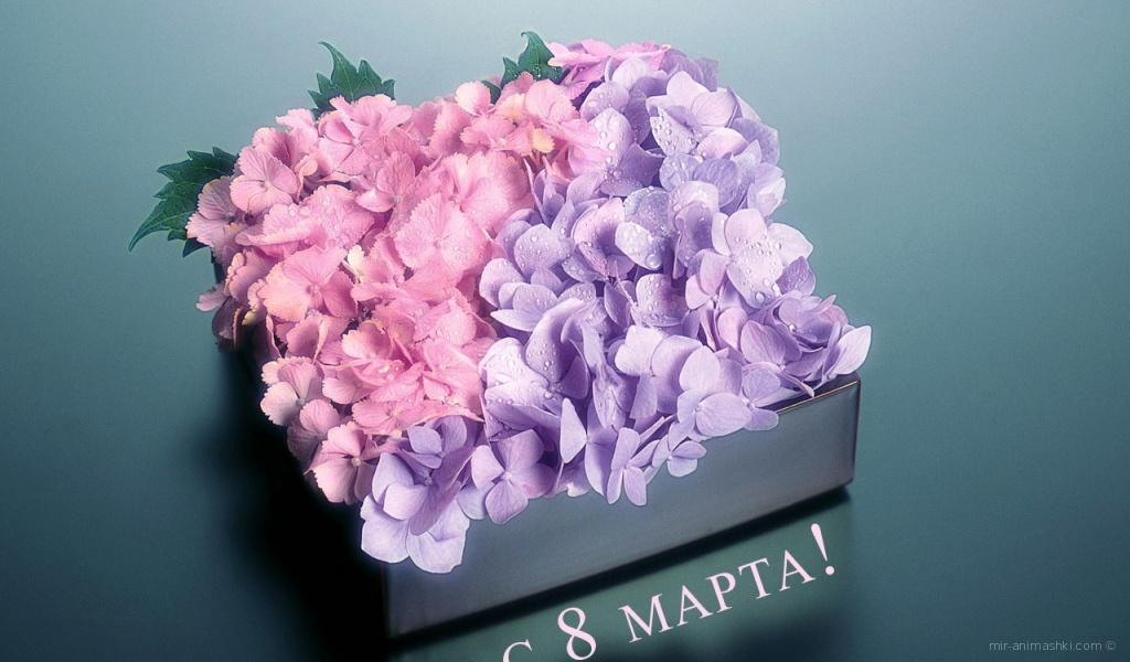 Коробка с цветами на 8 марта - C 8 марта поздравительные картинки