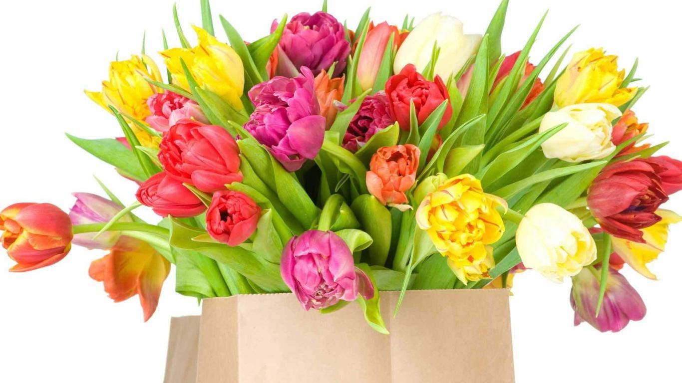 Красивый букет тюльпанов на 8 марта - C 8 марта поздравительные картинки