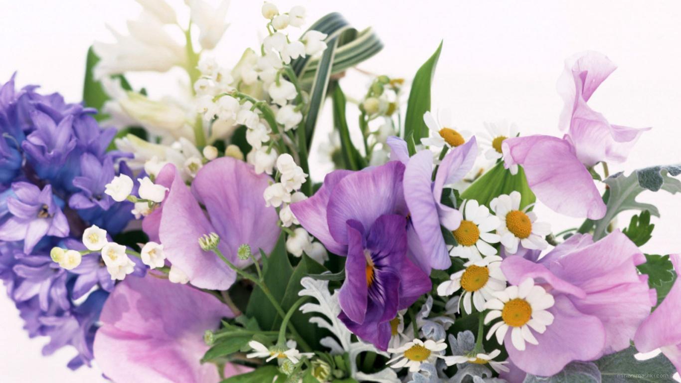 Цветочная композиция на 8 марта - C 8 марта поздравительные картинки
