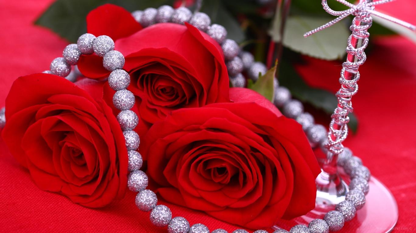 Красные розы на 8 марта на красном фоне - C 8 марта поздравительные картинки