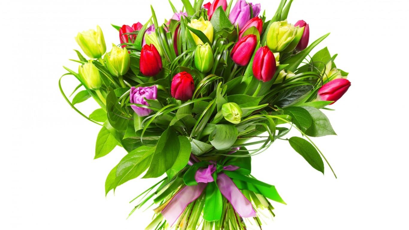 Разноцветные тюльпаны девушке на 8 марта - C 8 марта поздравительные картинки