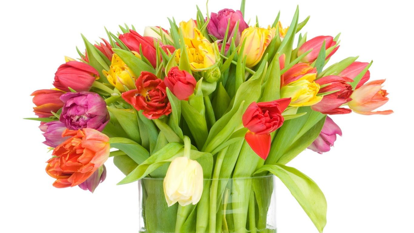 Большой букет тюльпанов девушке на 8 марта - C 8 марта поздравительные картинки