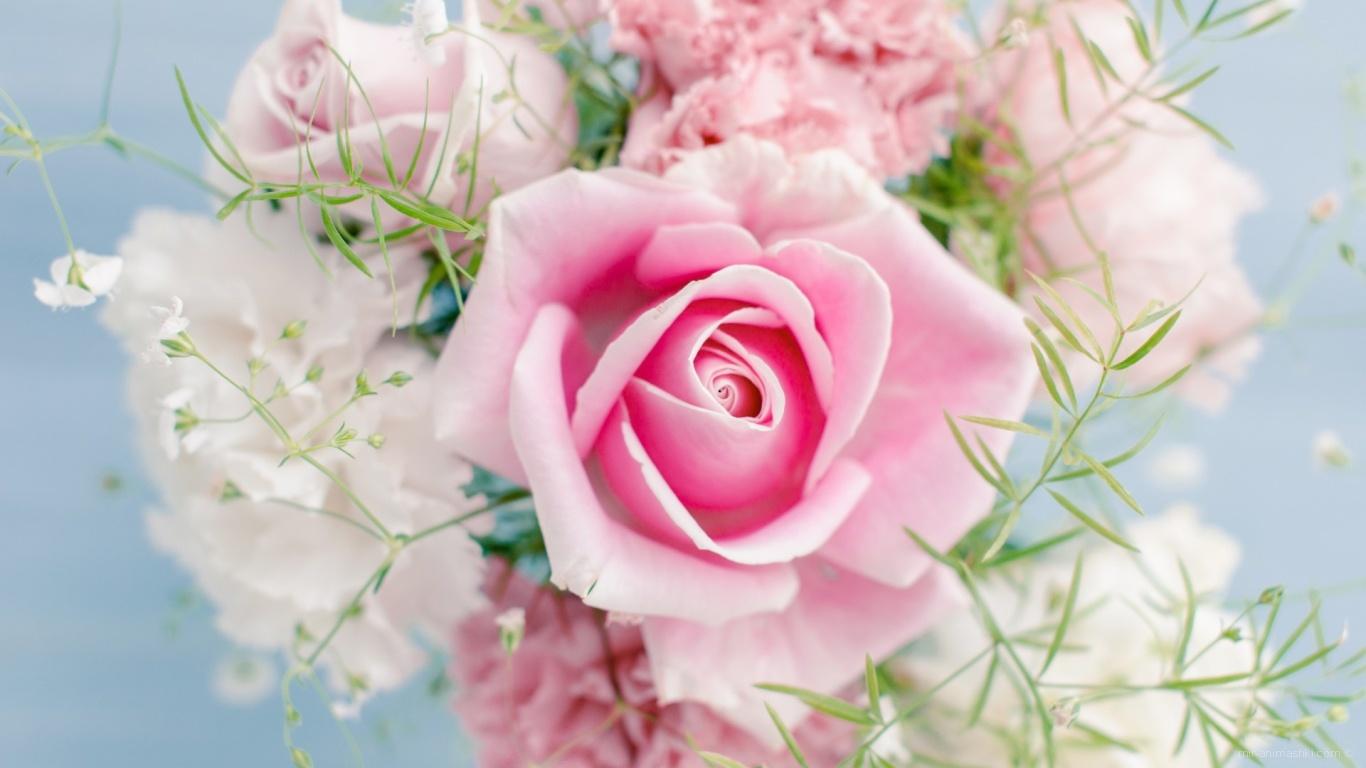 Великолепный букет на 8 марта - C 8 марта поздравительные картинки