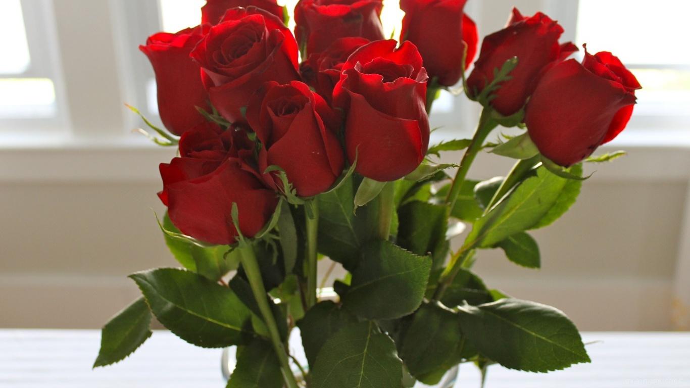 Красные розы на 8 марта - C 8 марта поздравительные картинки