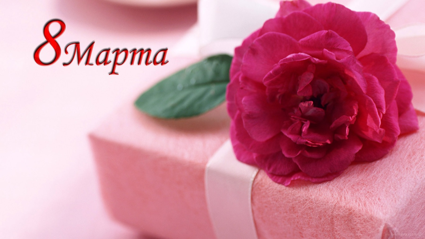 Красивый подарок на 8 марта - C 8 марта поздравительные картинки