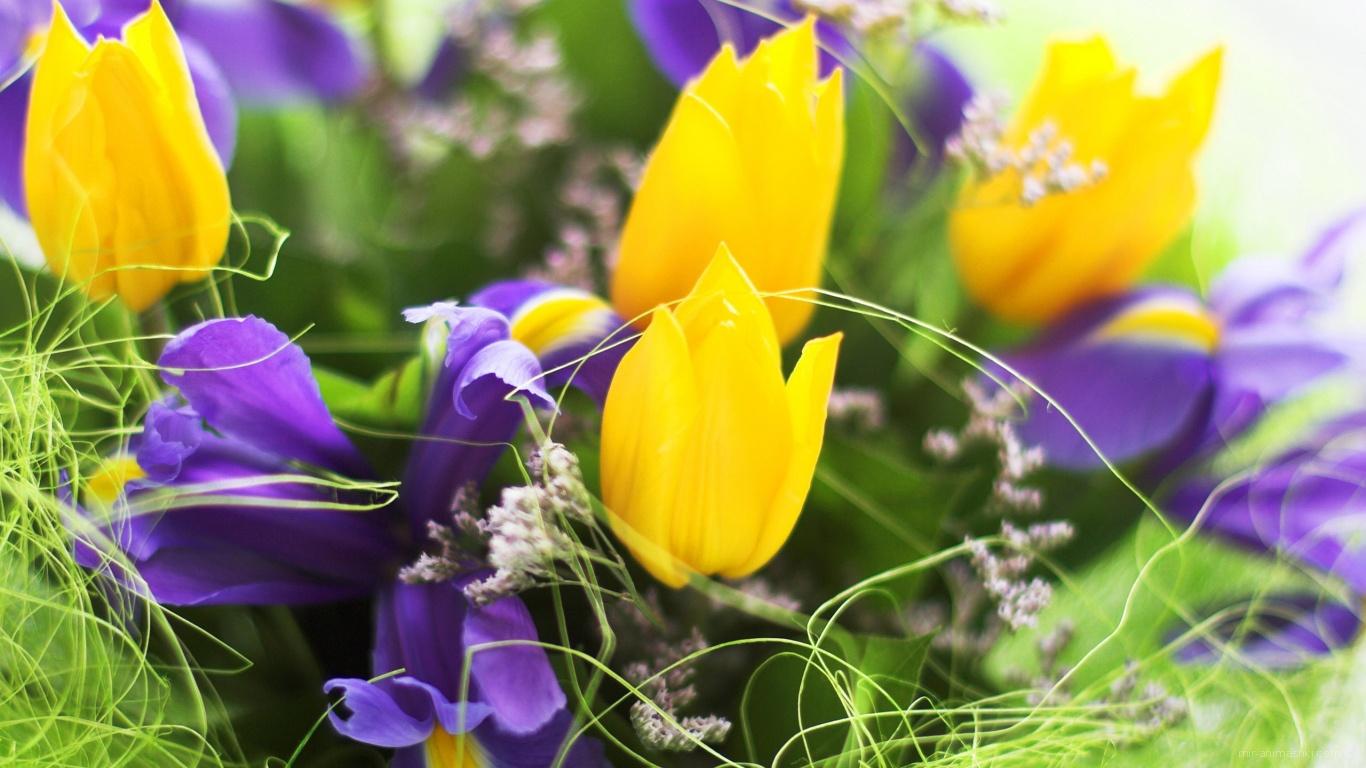 Весенние цветы на 8 марта - C 8 марта поздравительные картинки