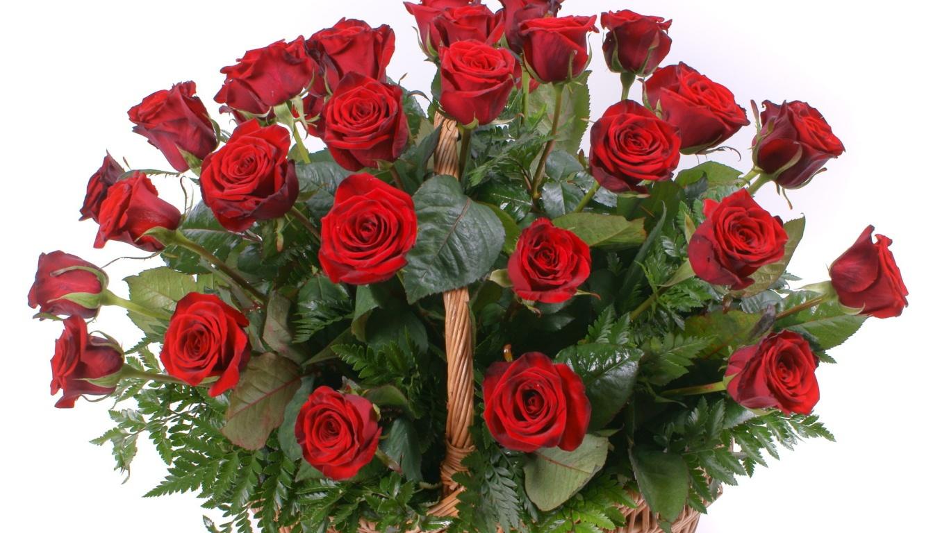 Красные розы на 8 марта в корзинке - C 8 марта поздравительные картинки