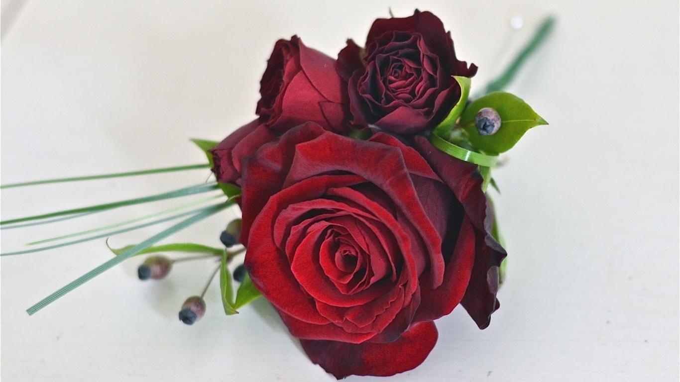 Красивый букет красных роз на 8 марта - C 8 марта поздравительные картинки