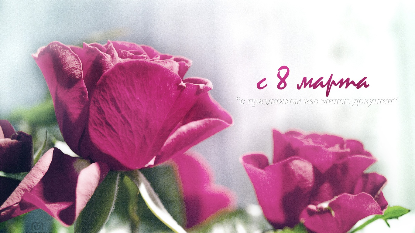С праздником весны 8 марта, милые девушки - C 8 марта поздравительные картинки