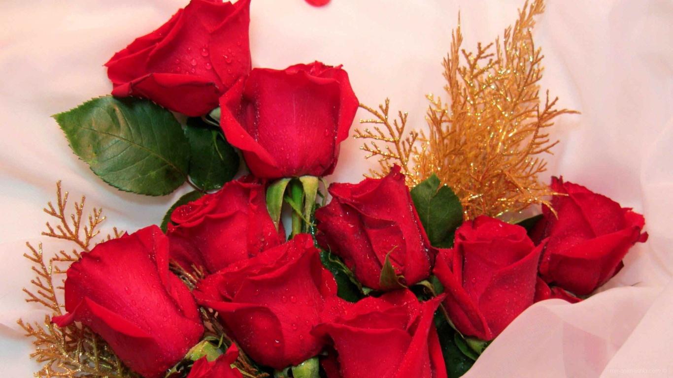 Днем рождения, картинки открытки 8 марта розы красивые